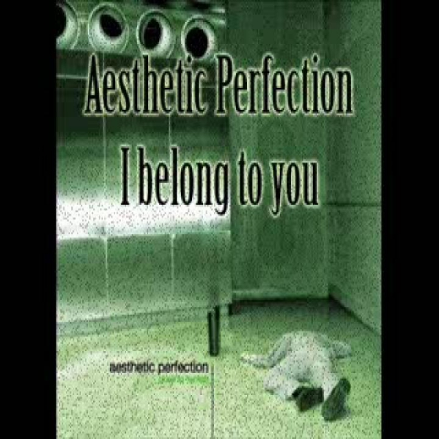 Aesthetic Perfection - I Belong to You