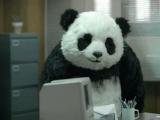 Sose mondj nemet a pandának!