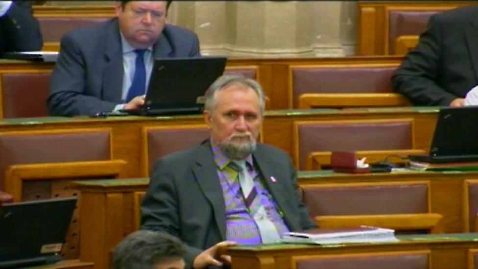 Egyedül a Fideszben