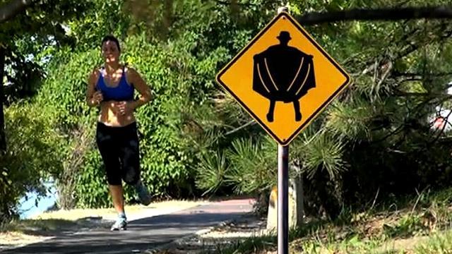 Szatír ijesztgeti a Margitszigeten futókat