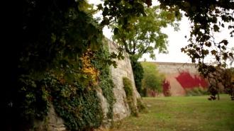 Tudtad, hogy a Budai Vár lan-káin valaha szőlő termett?