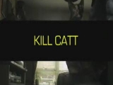 KILL CAT'S :-)) FIGHTER MACSEKOK :-))