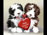Happy Valentines Day !!!