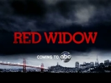 ABC Upfronts 2012: Red Widow