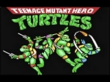 1991 Teenage Mutant Hero Turtles - The Coin-Op!