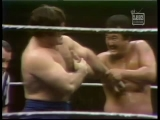 Bruno Sammartino vs Mr. Fuji (WWWF 1974.01.23)