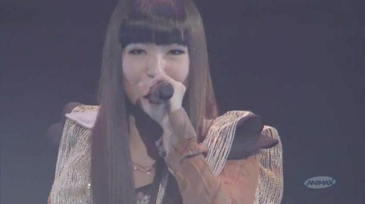 ANIMAX MUSIX Fall 2010 - Part 2 1/3