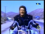 David Hasslehoff- Crazy For You