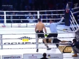 Roy Jones lost the fight Enzo Maccarinelli